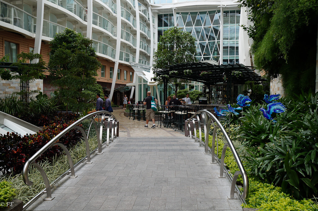 Allure of the Seas central park