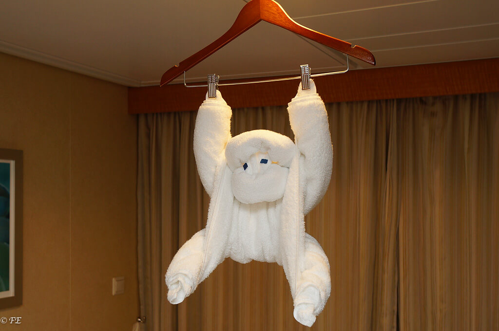 Allure of the seas towel animals