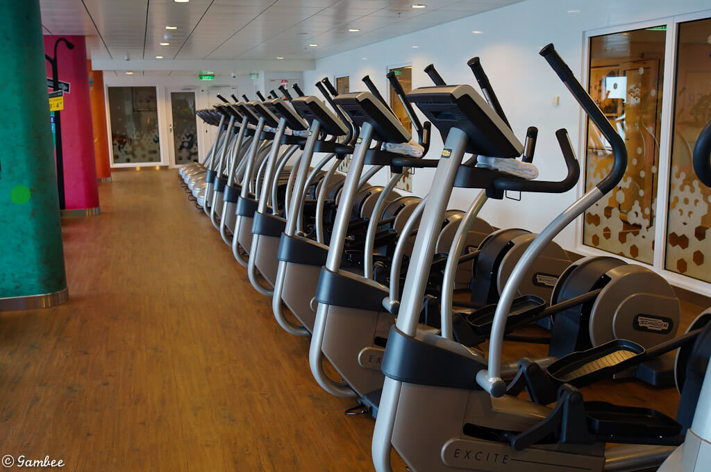 Norwegian Breakaway gym