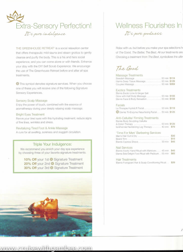 Holland America Spa products and prices-13